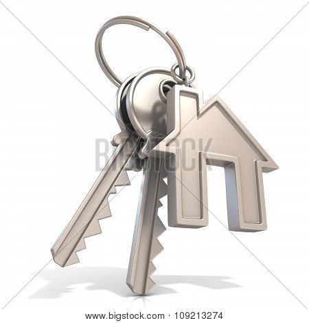 Key of house door isolated