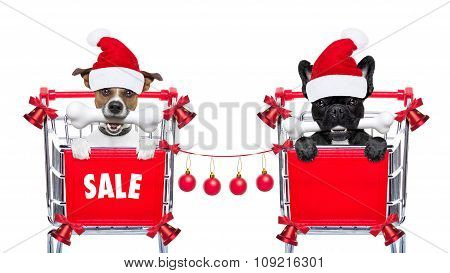 Christmas Sale Dogs