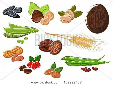 Appetizing nuts, beans, seeds and wheat