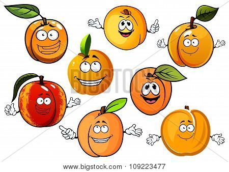 Cartoon peaches, nectarines and apricots fruits