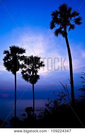 Beauty Landscape With Golden Sunset Above The Sea Background, Phuket Thailand