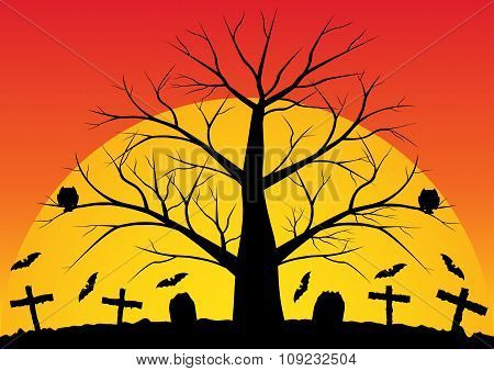 Dead Trees With Bats