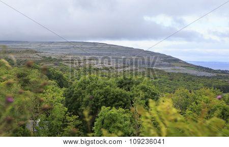 Picturesque landscape in Connemara National Park