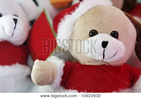 Santa Clause Bear puppies