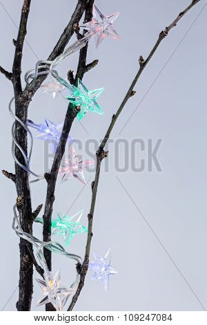 Christmas Star Garland On Branches Of Tree