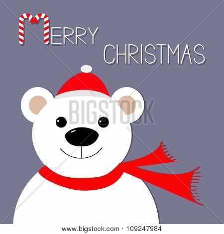 White Polar Bear In Santa Claus Hat And Scarf. Candy Cane. Merry Christmas Greeting Card. Violet Bac
