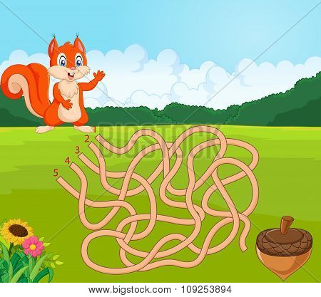 Help squirrel to find way to pinecone in the maze game