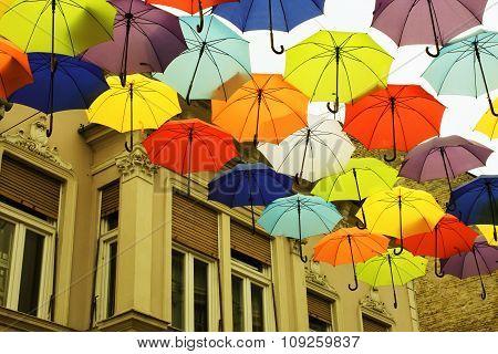 Scenery In Autumn, With Umbrellas