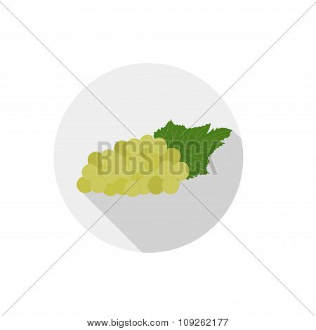 Isolated Flat Icon Of Vegetarian Food Fruits On White Background. Ripe Green Grapes. Vector