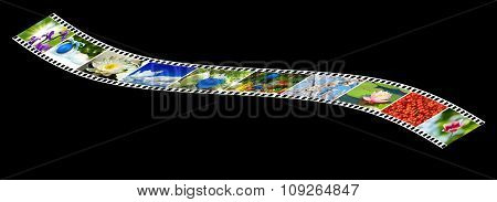 Image Of Nature Photo On The Photo Strip On A Black Background