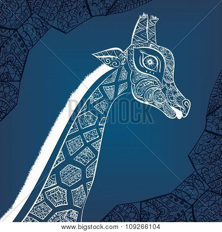 Beautiful adult Giraffe. Hand drawn Illustration of ornamental giraffe.  isolated giraffe on white b
