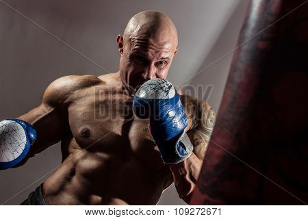 Strong Muscular Boxer In Training