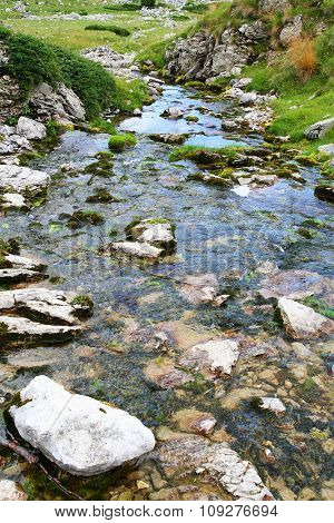 Water stream. Clean and fresh water concept