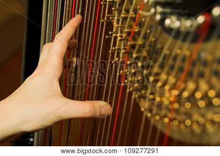 Harp and hand on strings. Classic music concept