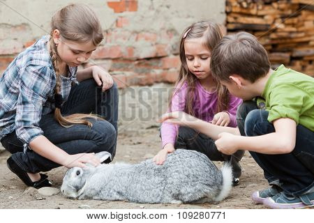 Children Playing With Rabbit