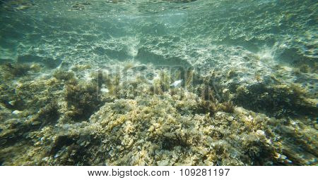 Rocks in the sea and water surface, underwater life