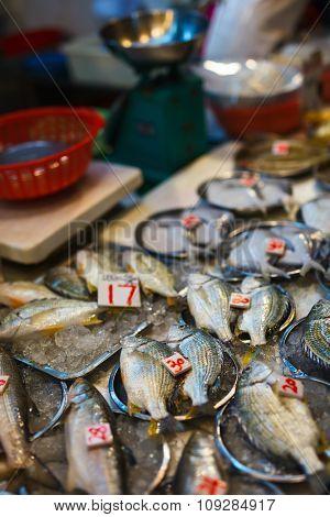 Fresh fish at seafood market in Hong Kong