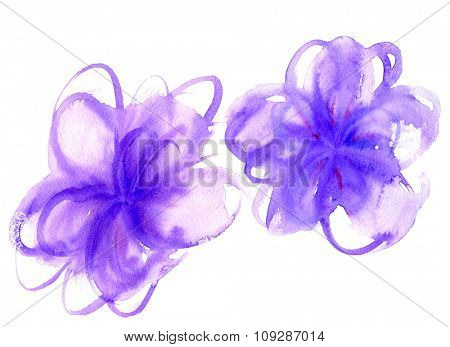 Watercolor hand drawn abstract purple flowers