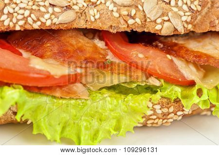 Big sandwich closeup with meat and vegetables