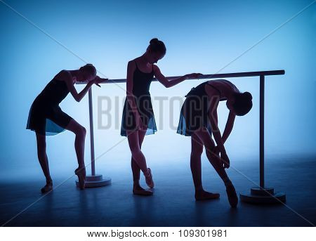 The young ballerinas stretching on the bar