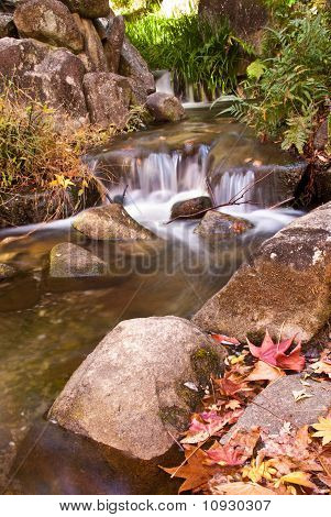 Miniature Waterfall And Fall Leaves