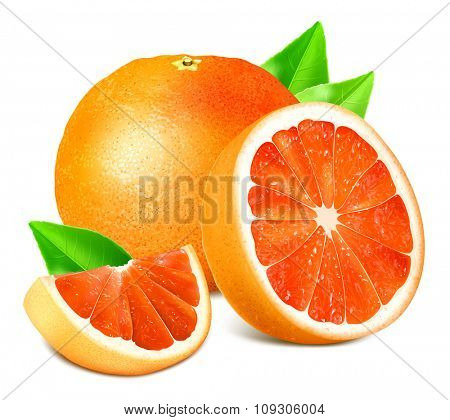Ripe grapefruits with leaves. Vector illustration.