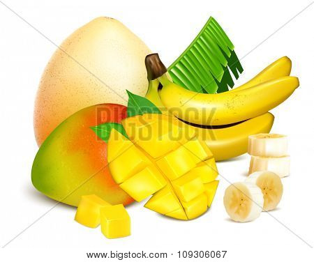 Ripe fresh exotic fruits. Vector illustration