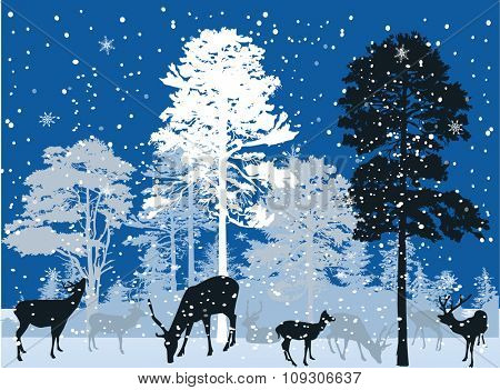 illustration with deers in forest under snowfall