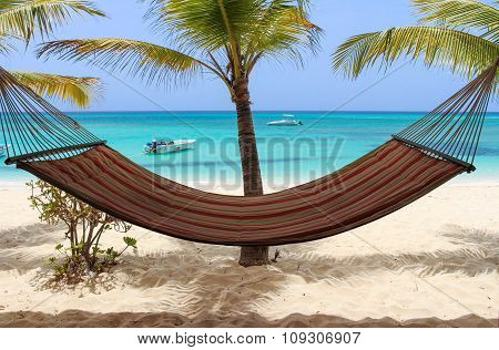 Hammock, Palms and the Sea