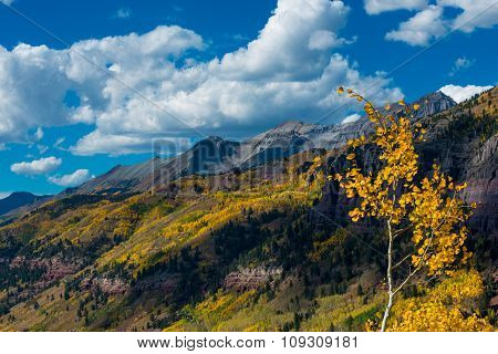Telluride Fall Colors Colorado Landscape