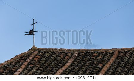 Vane On A Roof