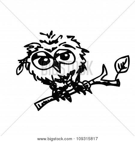 cute little owl cartoon sketch