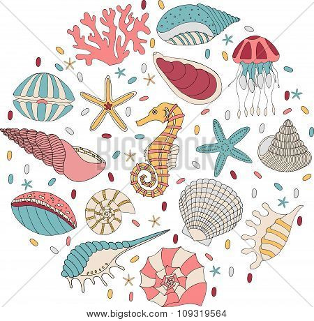 Wonderful vector set of seashells, starfish and seahorses.