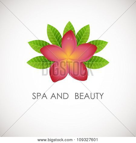 Pink frangipani flower with green leaves logo. Vector logotype for spa, beauty salon, massage or yoga center