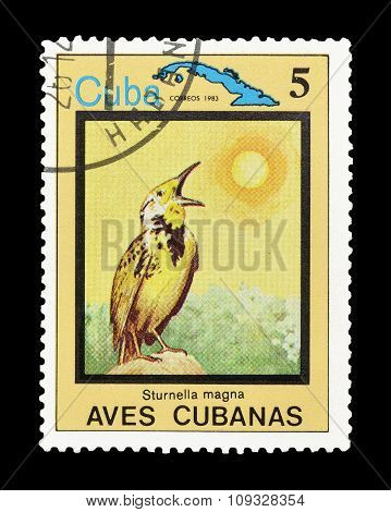 Cuba 1983 The eastern meadowlark