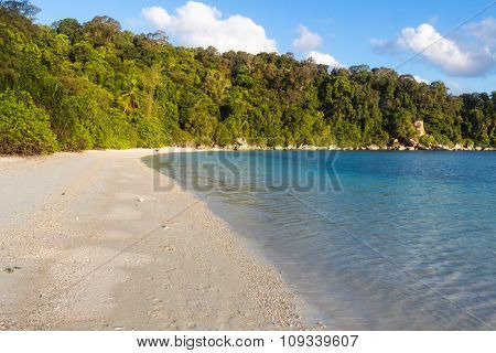 White Sand Beach With Jungle
