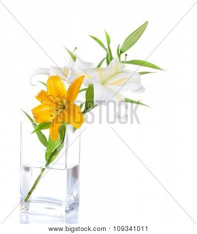 Lily Bouquet isolated on a white background