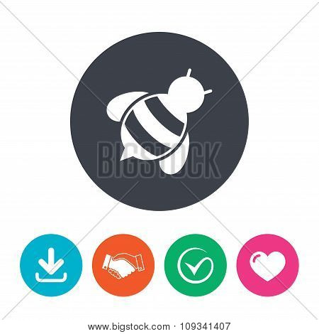 Bee sign icon. Honeybee or apis symbol.