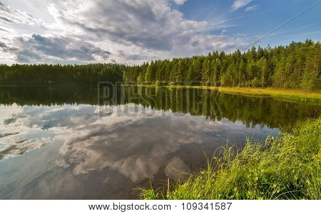 green summer landscape with small lake and forest