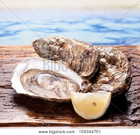 Raw oyster and lemon isolated on a sea background.