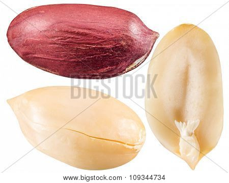 Peeled and opened peanuts. File contains three clipping paths.