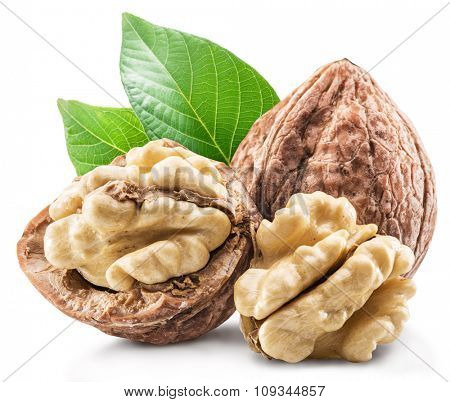 Walnuts and leavesl isolated on the white background. Clipping path.