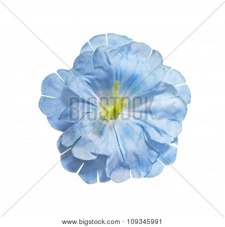 Blue Artificial Flower Isolated On White