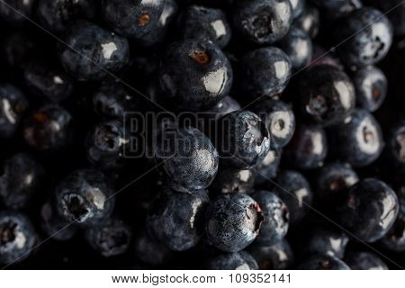 Closeup on blueberries