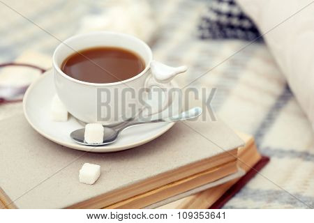 Cup of coffee with books on sofa in living room