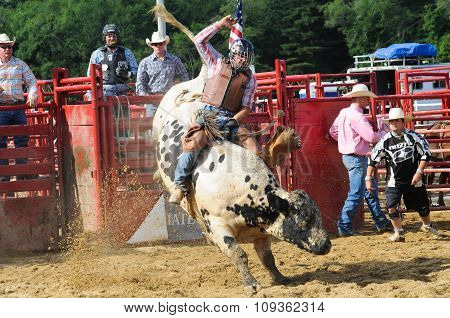 A Rodeo Cowboy Riding A Bucking Bull
