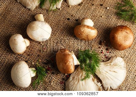 Mushrooms on sackcloth background