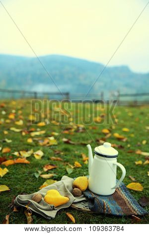 Teapot, fruits and nuts on grass