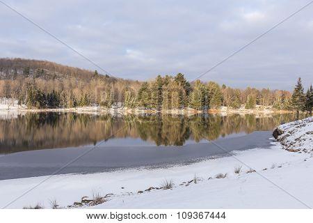 Winter landscape in North America