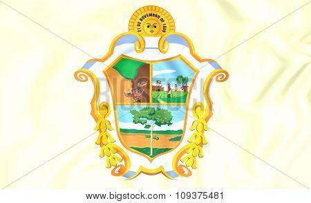 Flag Of Manaus (amazonas), Brazil.